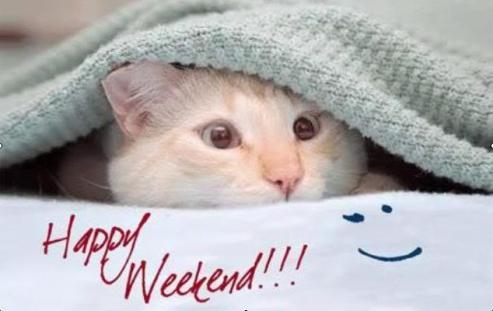 py_weekend